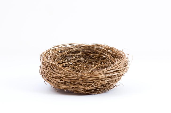 Empty Nest Chicken Rolls