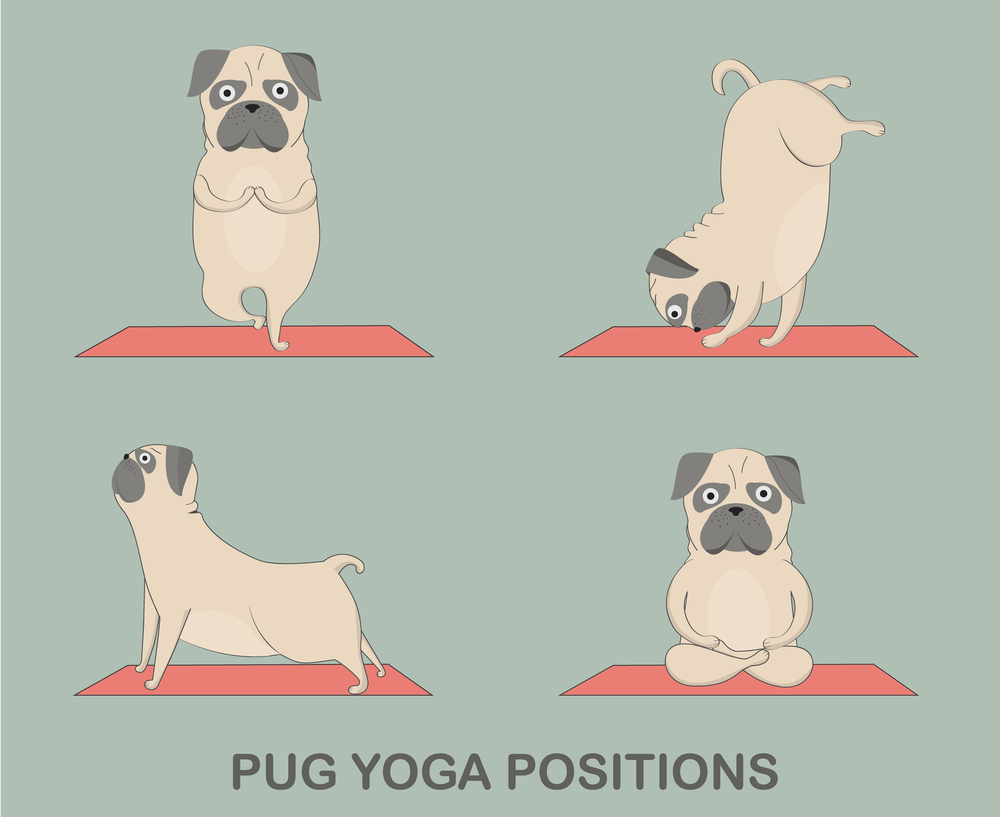 A Challenge To All You Yogi People Out There.