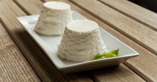 Cheese Heals